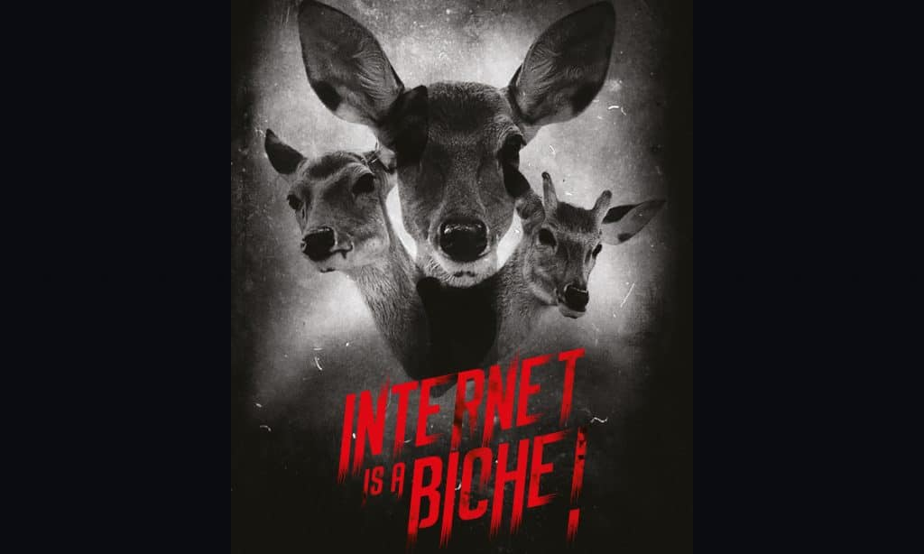 iseg-eartsup-epita-internet-is-a-biche-cyber-sécurité