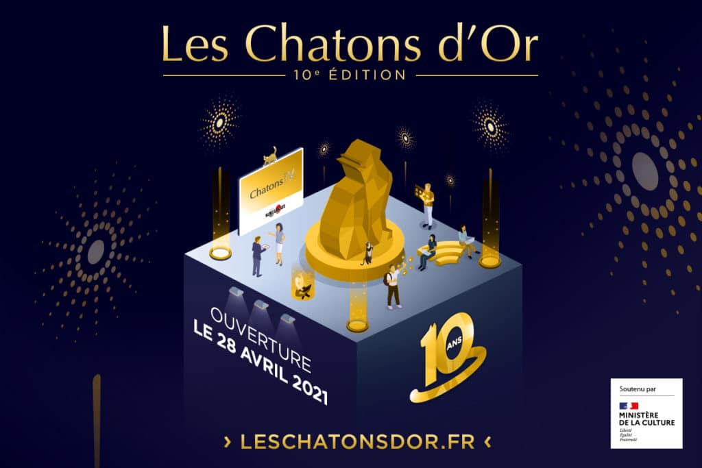 chatons-d'or-2021-digitale-3D-festival